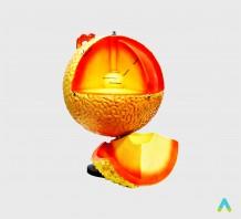 "фото - Глобус-модель ""Будова Сонця"""