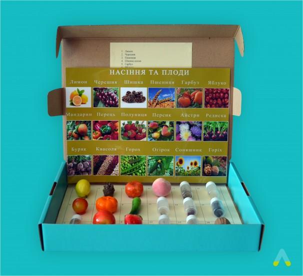 """Колекція """"Насіння і плоди"""" - фото"""
