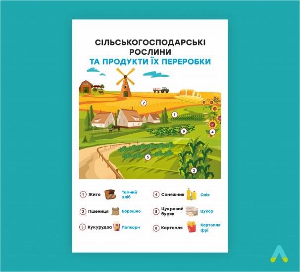 """Плакат """"Сільськогосподарські рослини та продукти їх переробки - фото"""